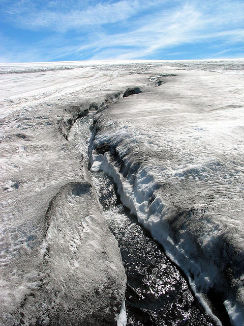 A rivulet of meltwater on the glacier