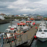 Peaceful Höfn harbor – guarded by the most dangerous inlet in Iceland.